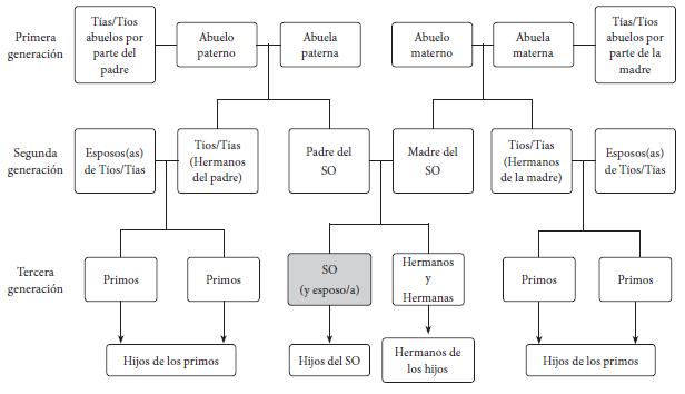 Estructura básica de un mapa de historia de familia